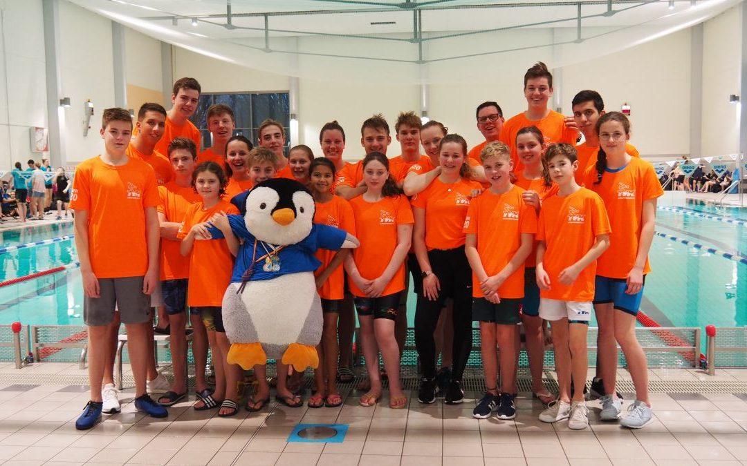 TVK-DMS-Teams werden Kreisklassenmeister